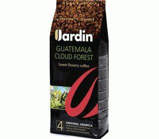 JARDIN Guatemala Cloud Fores